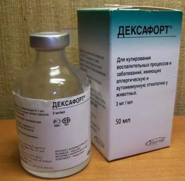 Дексафорт для кошек является проверенным ветеринарным препаратом, помогающим справляться со многими патологиями аллергической природы