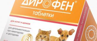 Кетофен для кошек: инструкция по применению, состав, дозировка и цена