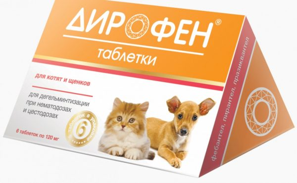 Дирофен для котят