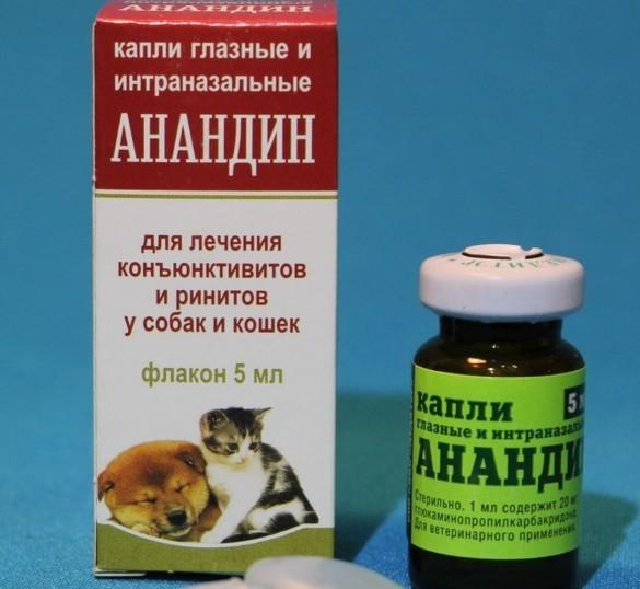 Чем лечить конъюнктивит у кошек капли