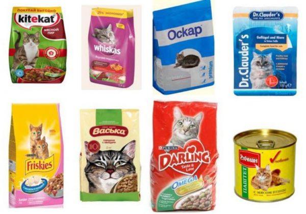 Корма эконом класса для кошек
