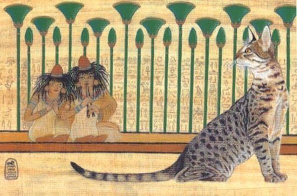 Кошки в истории Древнего Египта: их значение