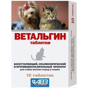 Какое обезболивающее можно дать кошке: 10 безопасных препаратов