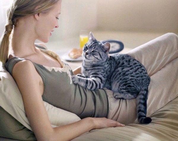 Каким образом кошки лечат людей