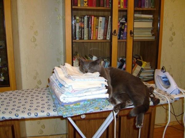 Лежание на чистом белье