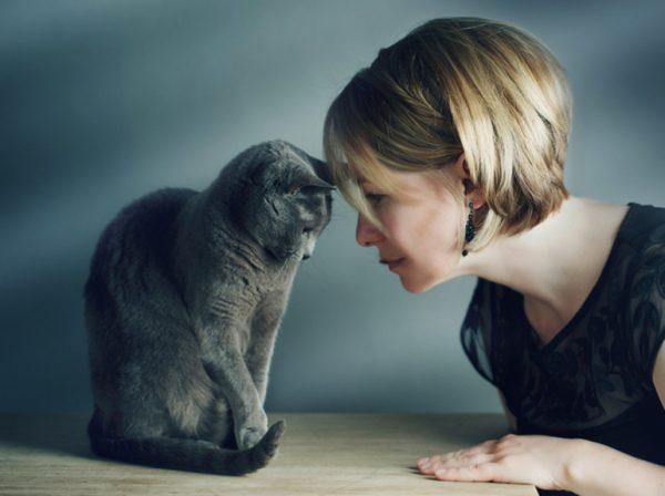 Что делать, если умер кот и как смириться с потерей