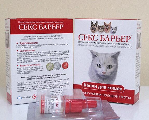 Секс Барьер для кошек: показания