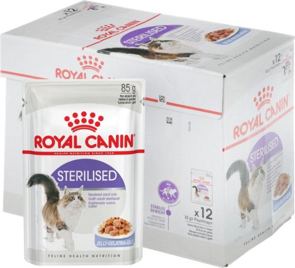 Почему стерилизованным кошкам необходимы особые корма
