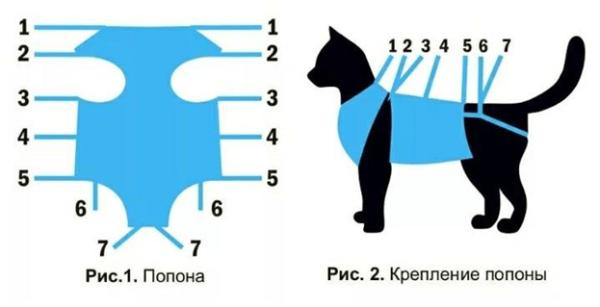 Попона для кошки своими руками: для чего нужна, из, чего сделать, пошаговая инструкция, как завязать